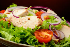 Chicken salad and fresh vegetables Royalty Free Stock Photography