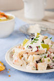 Chicken salad with grapes, apples and cranberries Royalty Free Stock Images