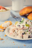 Chicken salad with grapes, apples and cranberries Royalty Free Stock Photo