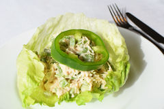 Chicken Salad in Lettuce Leaf. Chicken salad in a lettuce leaf.  Low Carb, Low Fat, Nutritional, protein packed lunch Stock Image