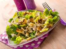 Chicken salad with lettuce Royalty Free Stock Images