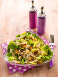 Chicken salad with lettuce Stock Photos