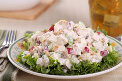 Chicken Salad meal. Chicken salad with apple pieces and nuts on top of lettuce Stock Image