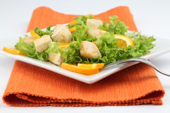 Chicken salad with oranges Royalty Free Stock Images