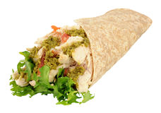 Chicken And Salad Pesto Wrap Stock Images