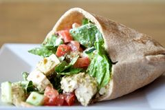 Chicken Salad in a Pita. A scrumptious chicken salad with tomatoes, cucumbers, and feta cheese inside a pita Royalty Free Stock Photos