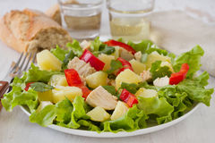 Chicken salad on the plate Stock Photos