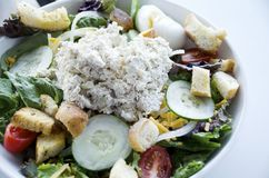 Chicken Salad. A chicken salad platter with fresh raw vegetables and croutons Stock Photography