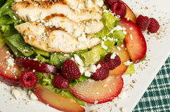 Chicken salad with plums and raspberries Stock Photos