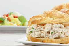 Chicken Salad Sandwich Stock Photo