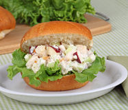 Chicken Salad Sandwich Royalty Free Stock Photo
