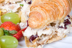 Chicken salad sandwich Royalty Free Stock Images