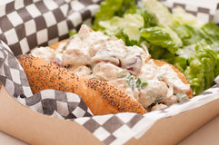 chicken salad sandwich with caesar Royalty Free Stock Images