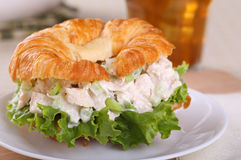 Chicken Salad Sandwich Closeup Stock Photos