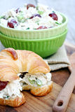 Chicken Salad Sandwich Stock Photography