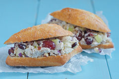 Chicken Salad Sandwich with Greek Yogurt Royalty Free Stock Photo