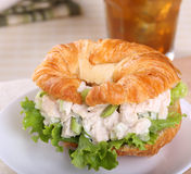 Chicken Salad Sandwich Stock Image