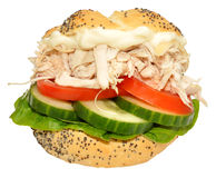 Chicken And Salad Sandwich Roll Royalty Free Stock Photography