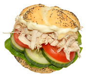 Chicken And Salad Sandwich Roll Royalty Free Stock Images