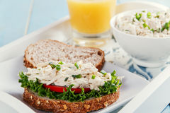 Chicken salad sandwich tomato Royalty Free Stock Images