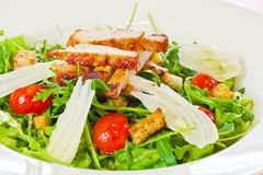 Chicken salad with tomatoes and arugula Royalty Free Stock Photo