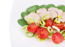 Chicken salad with tomatoes and leek. Royalty Free Stock Photography