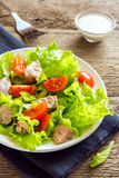 Chicken salad with tomatoes Royalty Free Stock Photo
