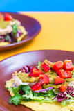 Chicken and Salad Tortilla with Avocado on Orange and Blue Background, Top View, Vertical Stock Photography