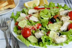 Chicken salad with vegetables and olive oil Stock Photography