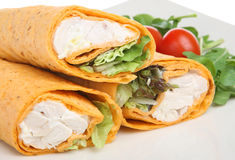 Chicken Salad Wrap Stock Photography