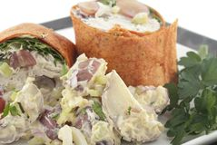 Chicken salad wrap Stock Photos