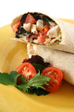 Chicken Salad Wrap 5 Royalty Free Stock Photography