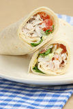 Chicken Salad Wrap Sandwich Stock Photography