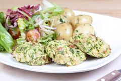Chicken, salami and courgette patties Stock Images