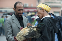 Chicken sale on the market in Marrakesh Royalty Free Stock Photography