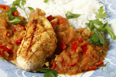 Chicken in salsa closeup royalty free stock image
