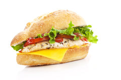 Chicken sandwich. Royalty Free Stock Images