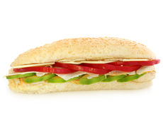 Chicken Sandwich Stock Image