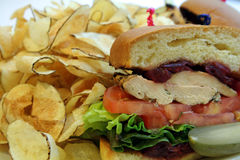 Chicken Sandwich. This is an image of a chicken sandwich and potato chips royalty free stock photography