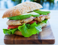 Free Chicken Sandwich Royalty Free Stock Images - 43255429