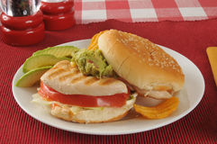 Chicken sandwich with avocado slices Stock Image