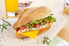 Chicken sandwich with fresh vegetables cheese. Royalty Free Stock Photography
