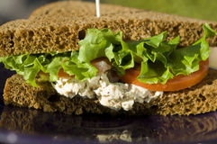Chicken sandwich with lettuce and tomato Royalty Free Stock Photos