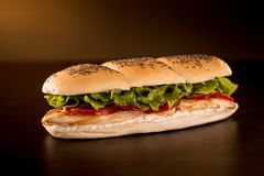 Chicken sandwich with lettuce, tomato and mayonnaise stock photography