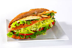 Chicken sandwich with vegetables, studio shot Stock Photography