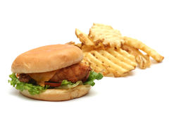 Chicken Sandwich. On a white background stock images