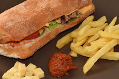 Chicken sandwitch. Chicken sandwitch with french fries and sauce Stock Images
