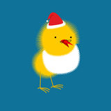 Chicken Santa Claus. Small bird with beard and mustache. Royalty Free Stock Photography
