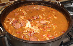 Chicken and Sausage Gumbo Royalty Free Stock Photo