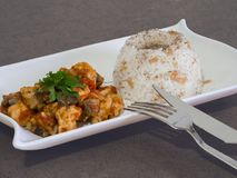 Chicken sauteed in white plate and rice stock photo